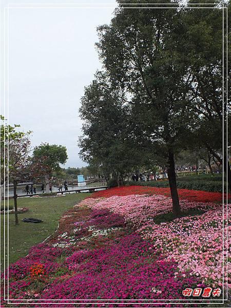 溪州公園DSCF5194.jpg