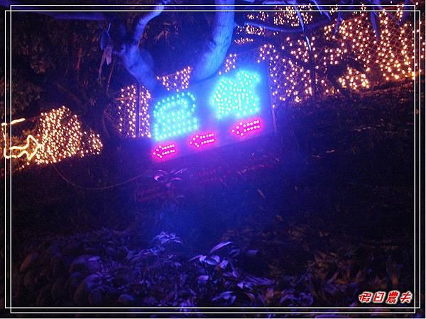 夜光高鐵DSCF4950.jpg
