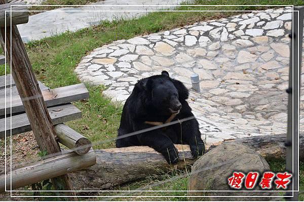 壽山動物園DSC_0141