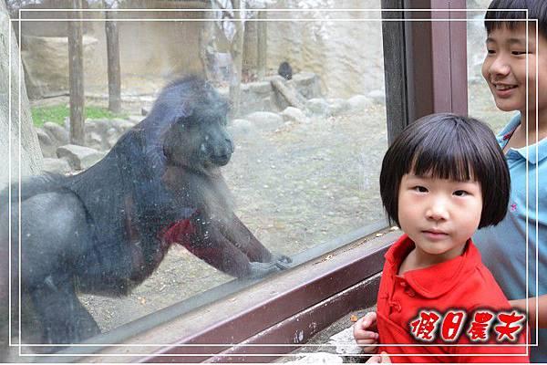 壽山動物園DSC_0150
