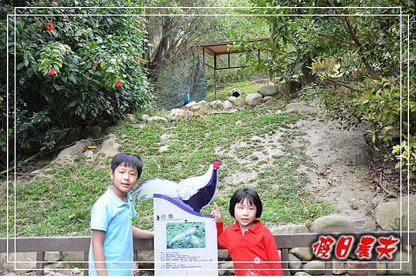 壽山動物園DSC_0255