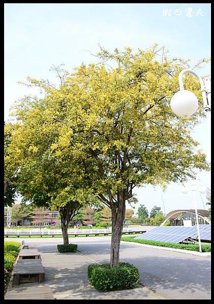 溪州公園DSC_2401