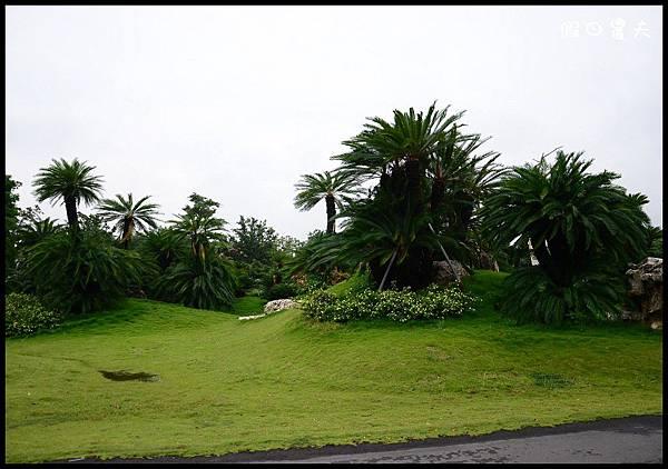 萬景園藝DSC_1502