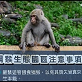 猴園DSC_5545
