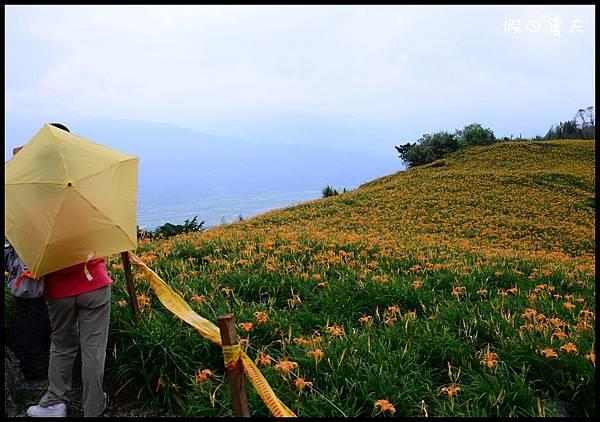 六十石山1DSC_8886.jpg