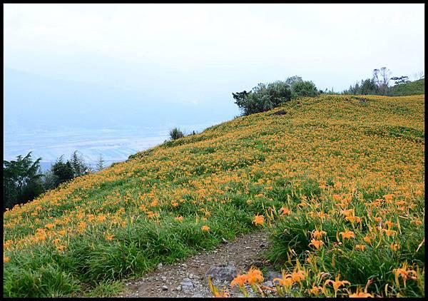六十石山1DSC_8888.jpg