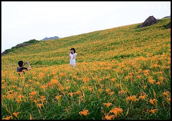 六十石山1DSC_8936.jpg