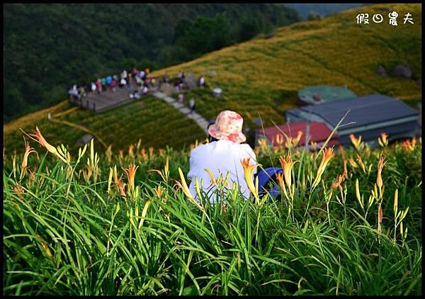 六十石山2DSC_9228.jpg