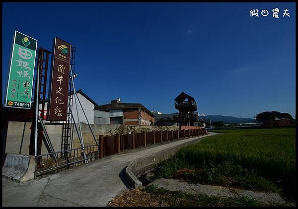 彩繪稻田DSC_9939