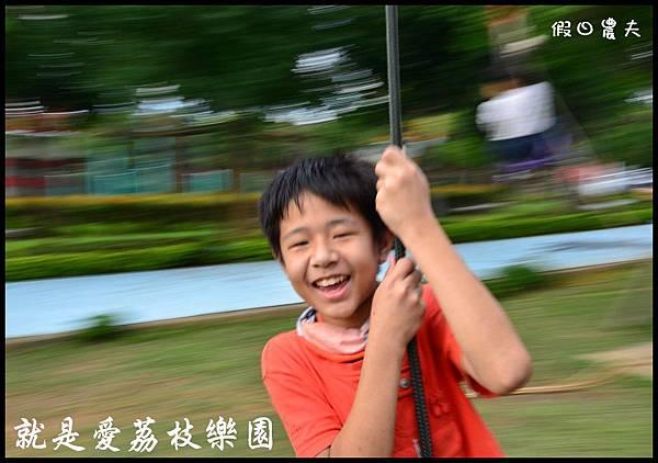 就是愛荔枝DSC_5452