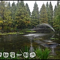 田尾DSC_0757