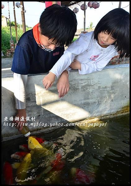 老塘湖渡假村DSC_7246