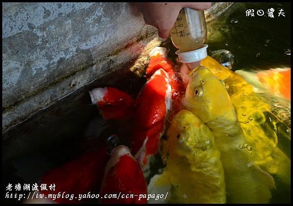 老塘湖渡假村DSC_7248