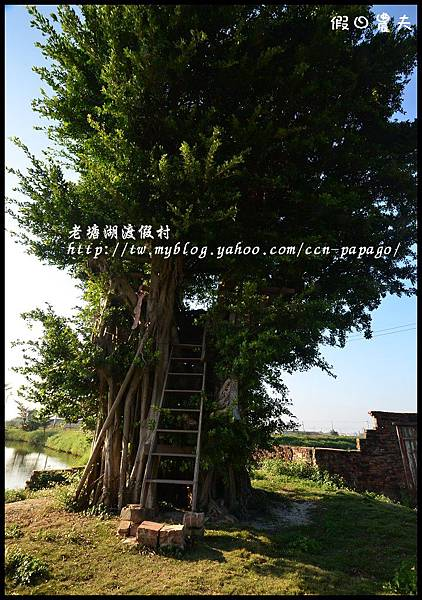 老塘湖渡假村DSC_7294