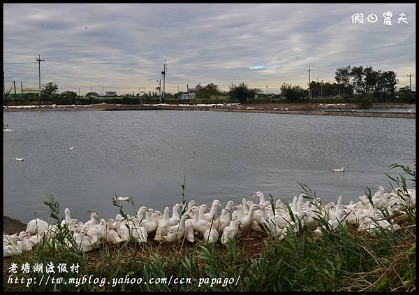 老塘湖渡假村DSC_7480
