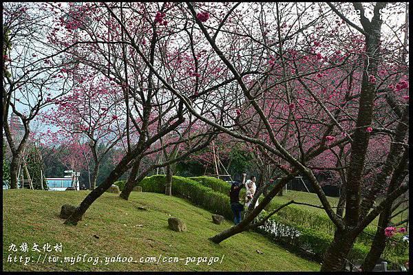 九族文化村DSC_2073