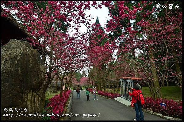 九族文化村DSC_2168