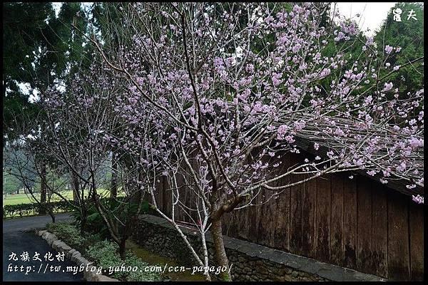九族文化村DSC_2207