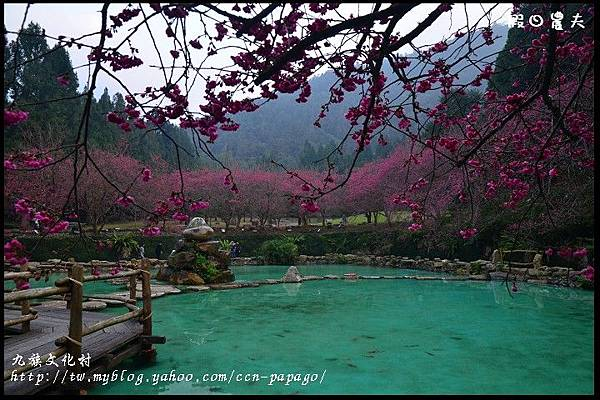 九族文化村DSC_2217