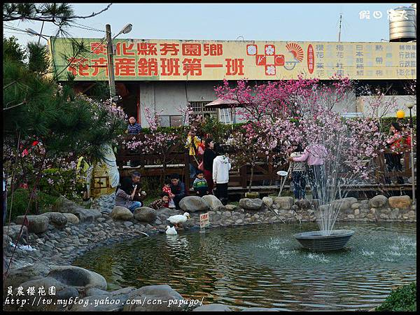 員農櫻花園DSC_2550