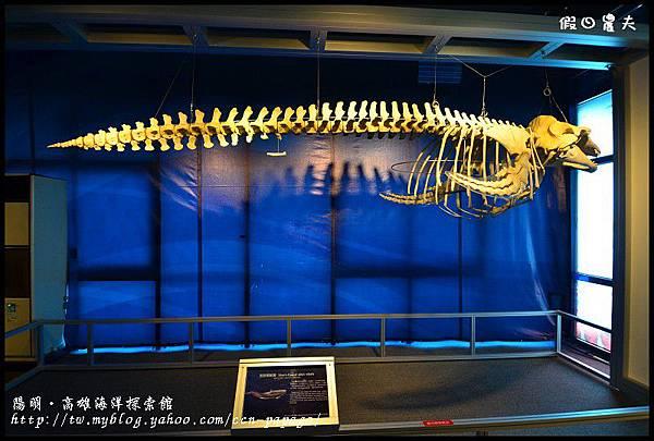 陽明‧高雄海洋探索館DSC_4003