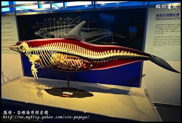 陽明‧高雄海洋探索館DSC_4005