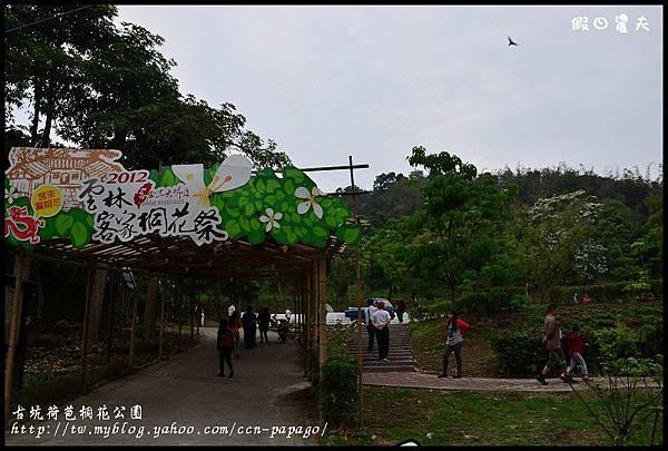 古坑荷苞桐花公園DSC_7416