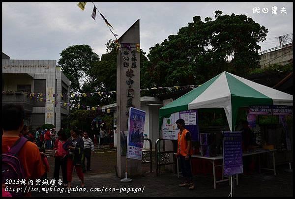 2013林內紫斑蝶季DSC_7386