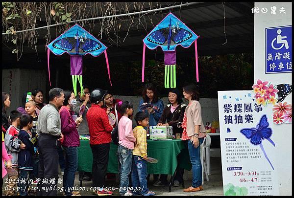 2013林內紫斑蝶季DSC_7391