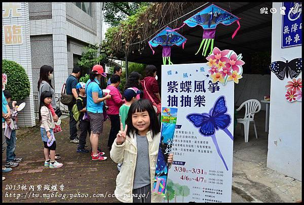 2013林內紫斑蝶季DSC_7394