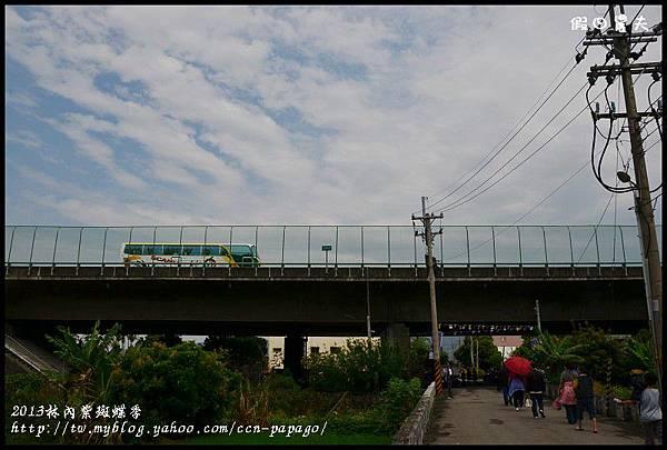 2013林內紫斑蝶季DSC_7409