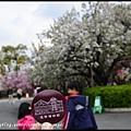 大阪自由行_DSC8894