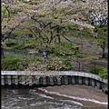 大阪自由行-造幣局櫻花_DSC8819