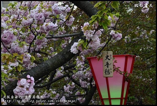 大阪自由行-造幣局櫻花_DSC8933