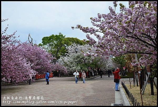 大阪自由行-造幣局櫻花_DSC8991