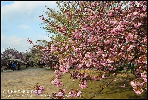 大阪自由行-造幣局櫻花_DSC9037