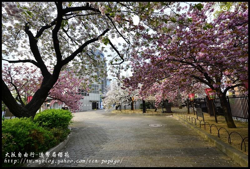 大阪自由行-造幣局櫻花_DSC9062