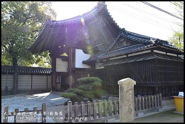 大阪自由行-四天王寺+動物園_DSC9189