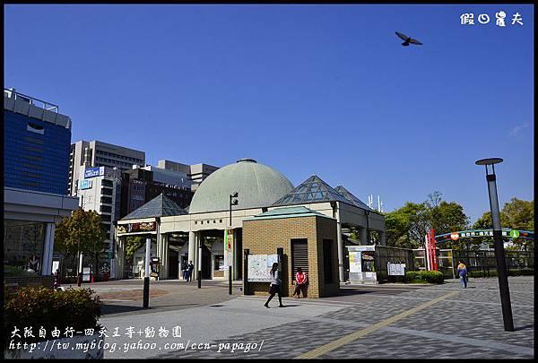 大阪自由行-四天王寺+動物園_DSC9243