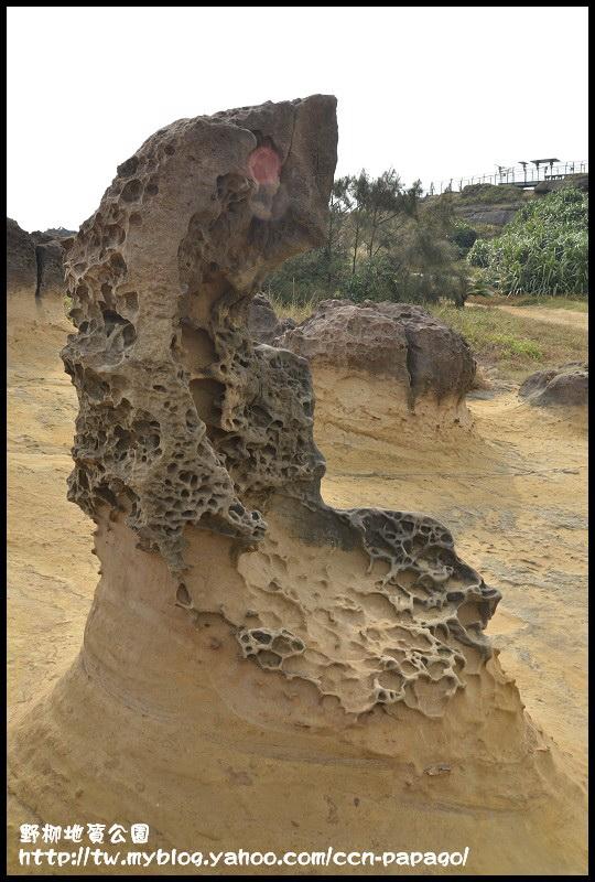 野柳地質公園_DSC3759