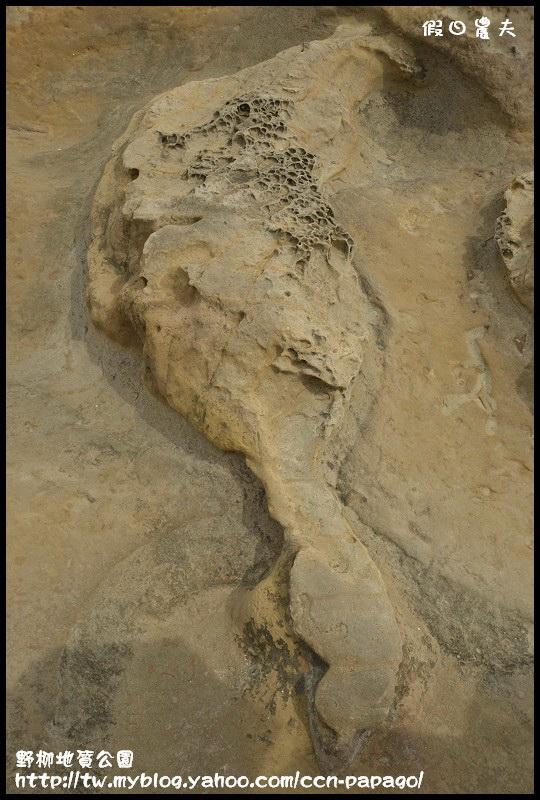 野柳地質公園_DSC3805