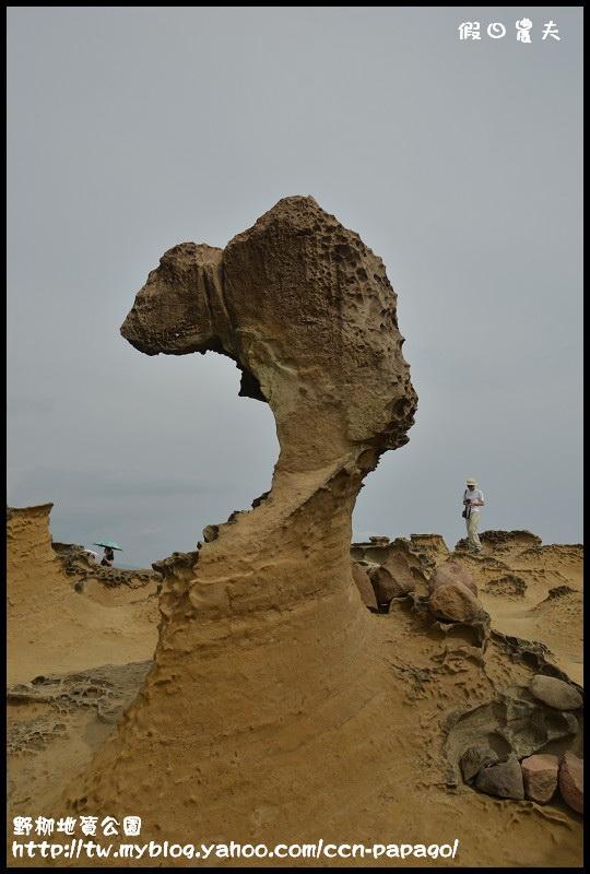 野柳地質公園_DSC3808