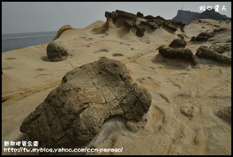 野柳地質公園_DSC3831