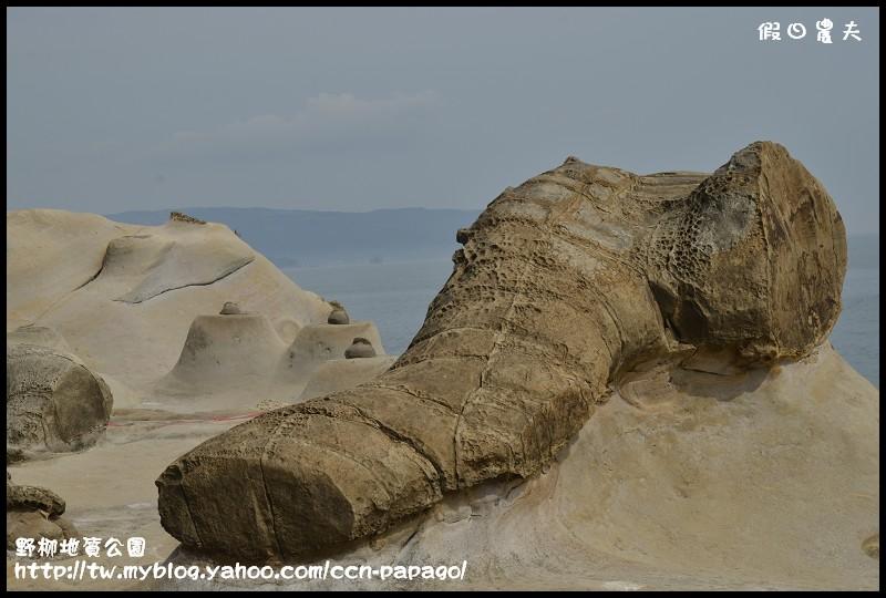 野柳地質公園_DSC3841