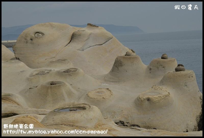 野柳地質公園_DSC3837