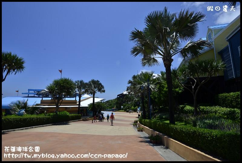 花蓮海洋公園_DSC6540