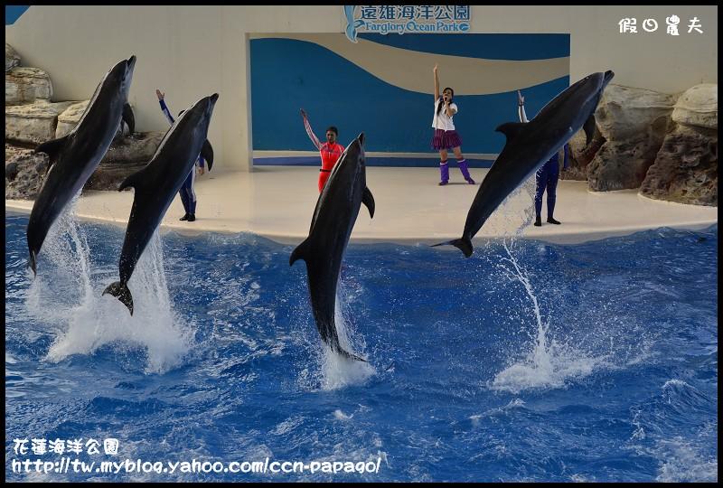 花蓮海洋公園_DSC6847
