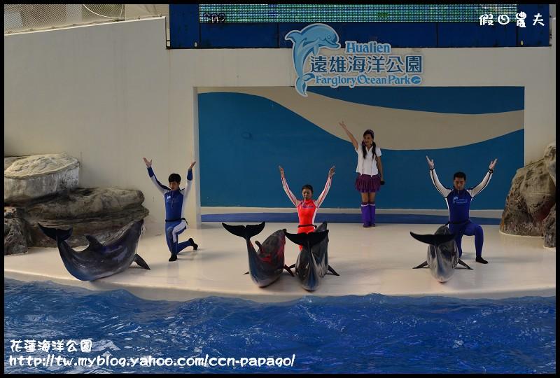 花蓮海洋公園_DSC6854