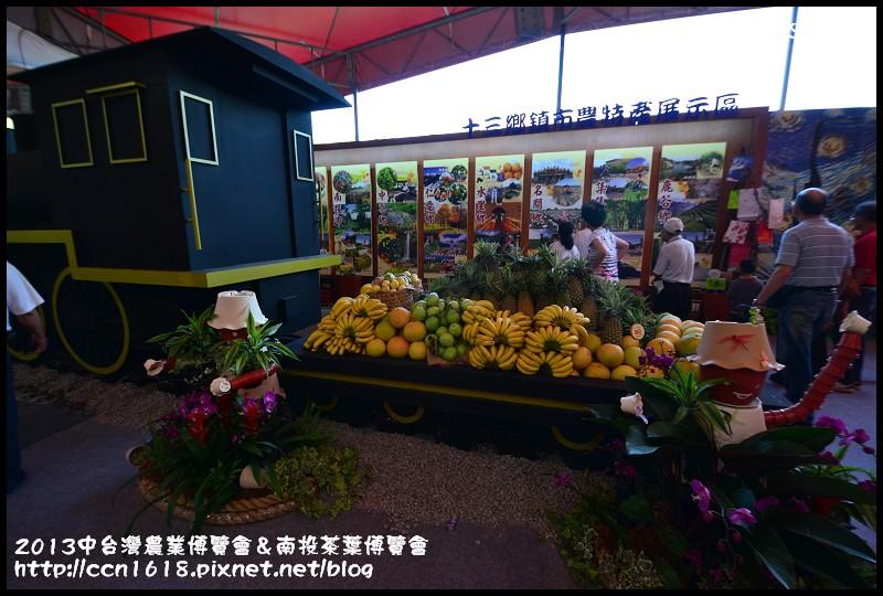 2013中台灣農業博覽會&南投茶葉博覽會DSC_0231