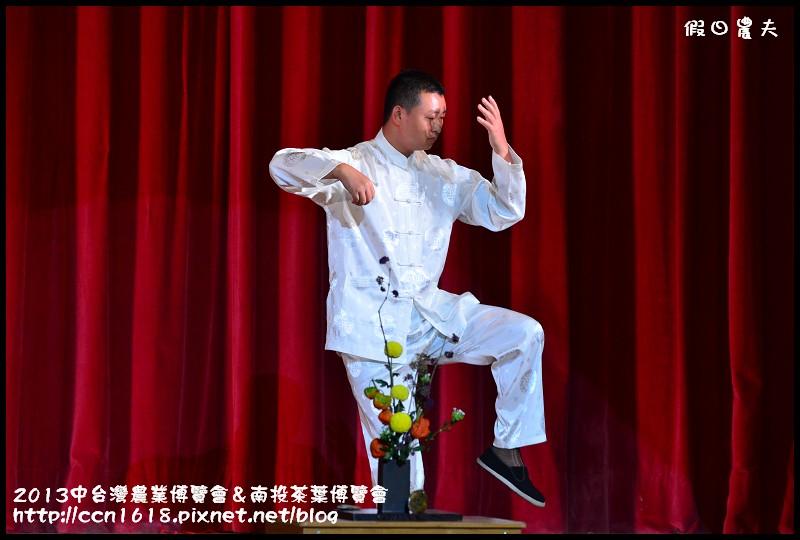 2013中台灣農業博覽會&南投茶葉博覽會DSC_2800